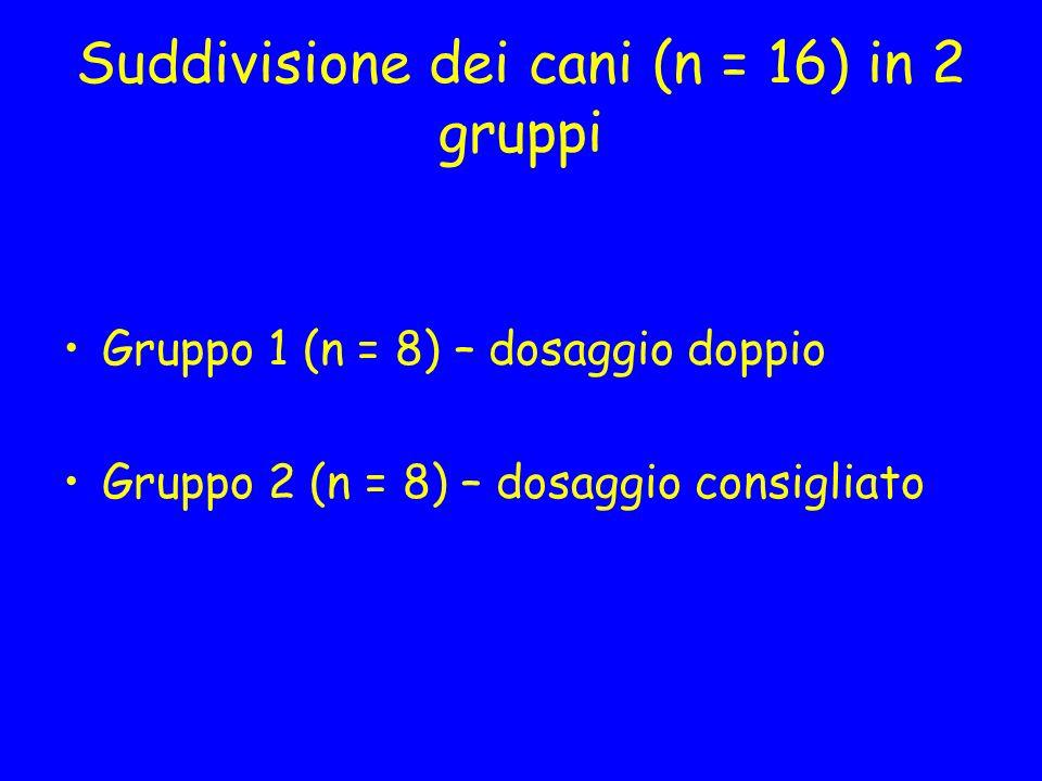 Suddivisione dei cani (n = 16) in 2 gruppi