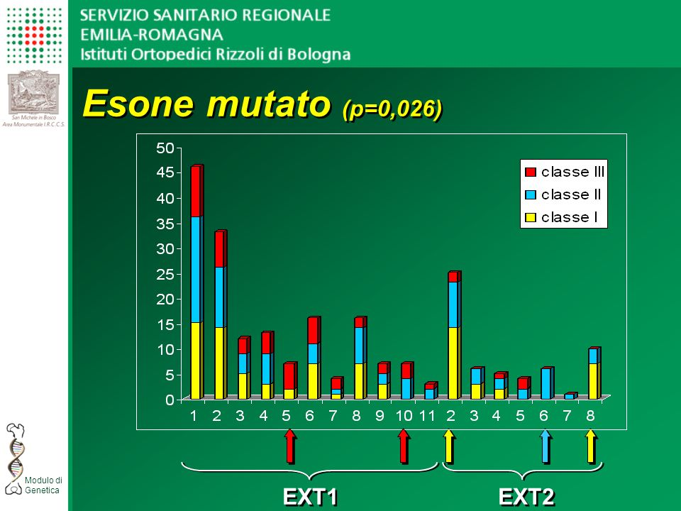 Esone mutato (p=0,026) EXT1 EXT2