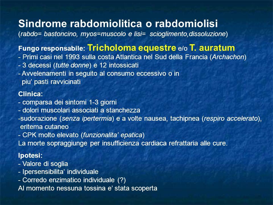 Sindrome rabdomiolitica o rabdomiolisi