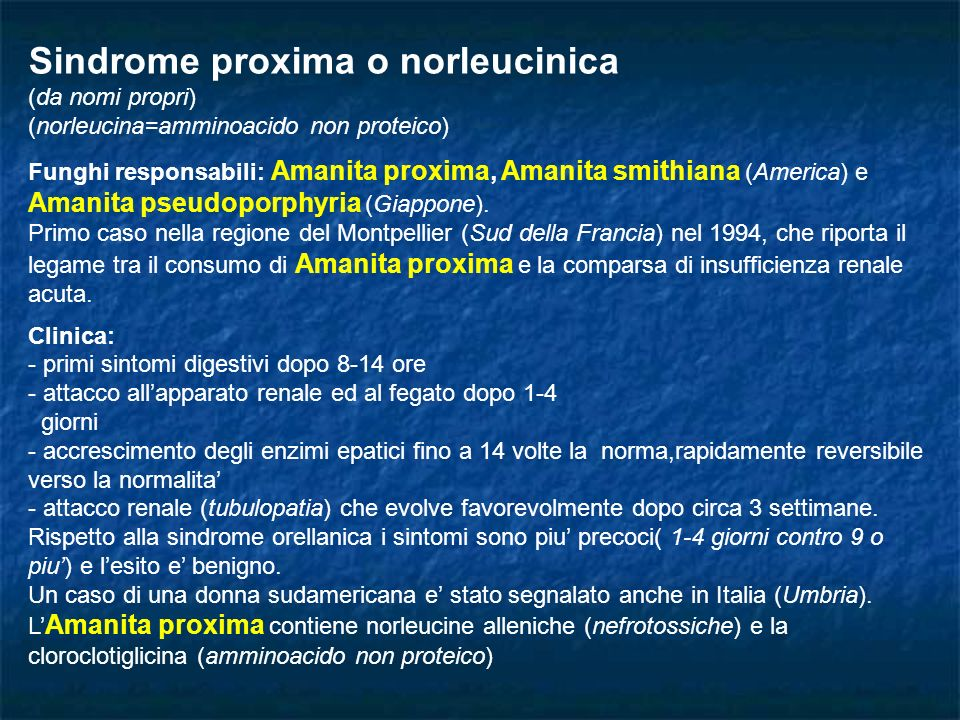 Sindrome proxima o norleucinica