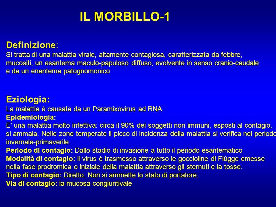 IL MORBILLO-1 Definizione: Eziologia: