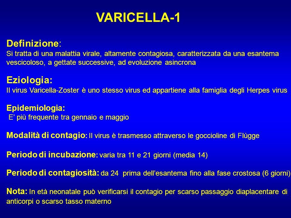 VARICELLA-1 Definizione: Eziologia: Epidemiologia: