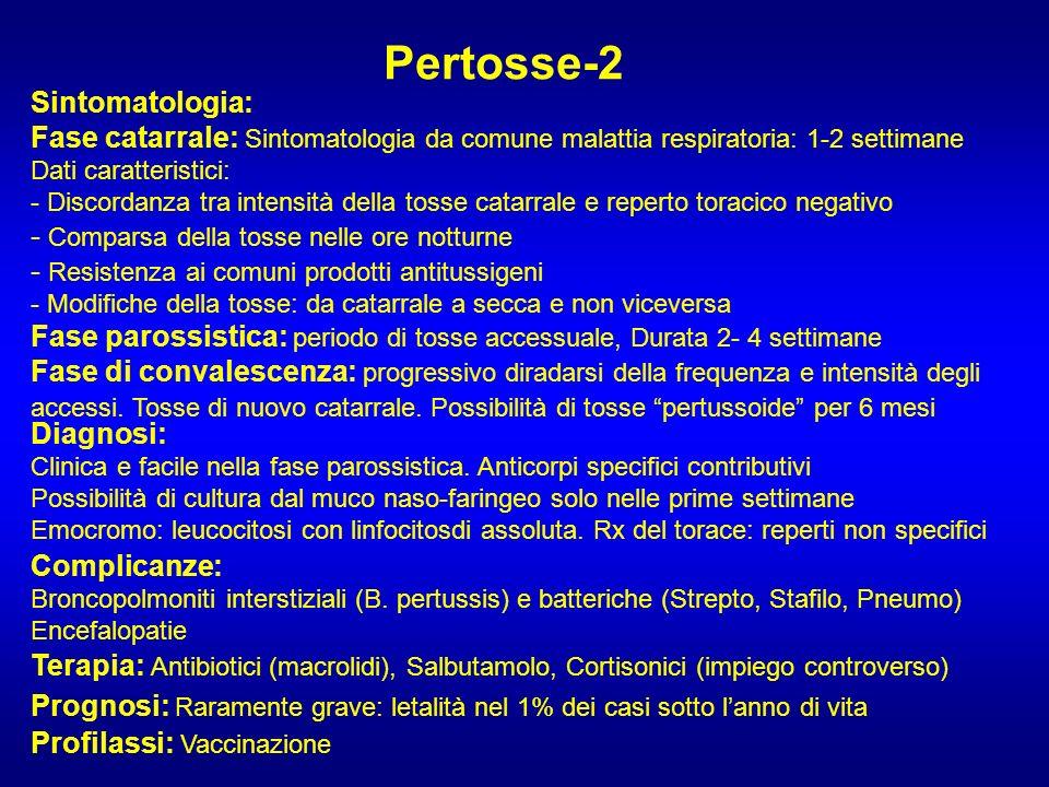 Pertosse-2 Sintomatologia: