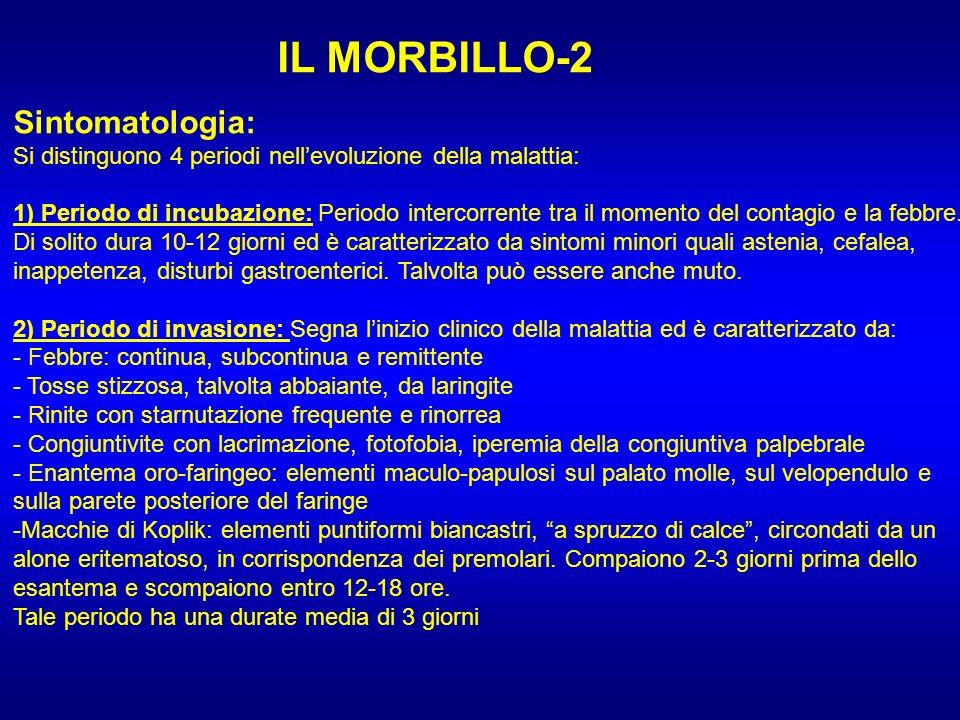 IL MORBILLO-2 Sintomatologia: