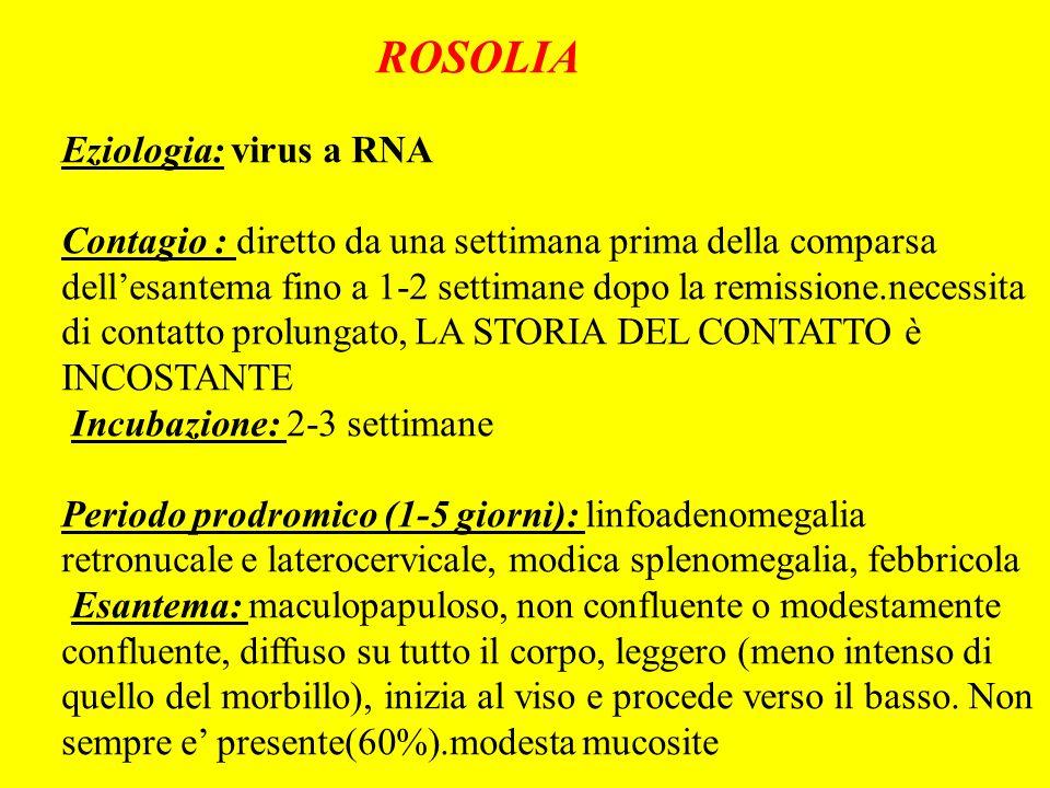 ROSOLIA Eziologia: virus a RNA