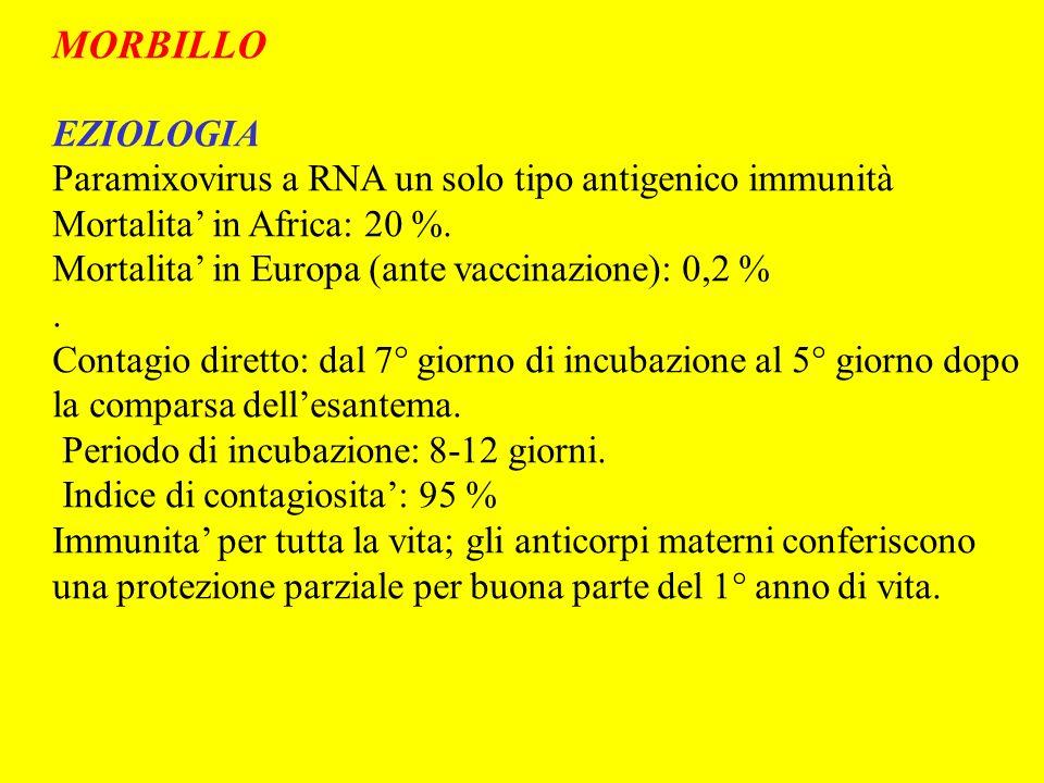 MORBILLO EZIOLOGIA. Paramixovirus a RNA un solo tipo antigenico immunità. Mortalita' in Africa: 20 %.