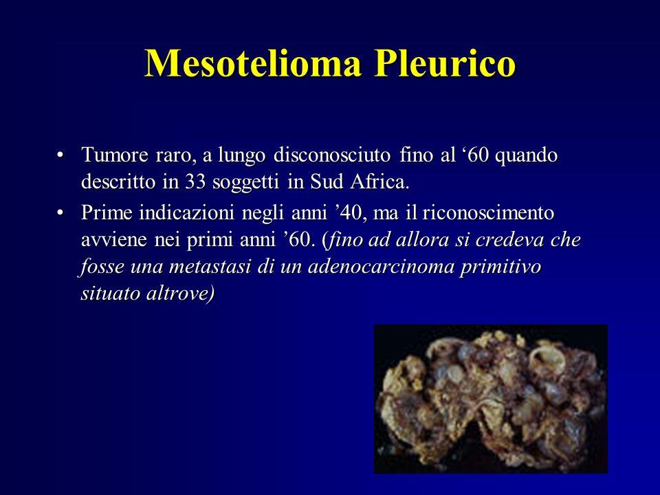 Mesotelioma Pleurico Tumore raro, a lungo disconosciuto fino al '60 quando descritto in 33 soggetti in Sud Africa.