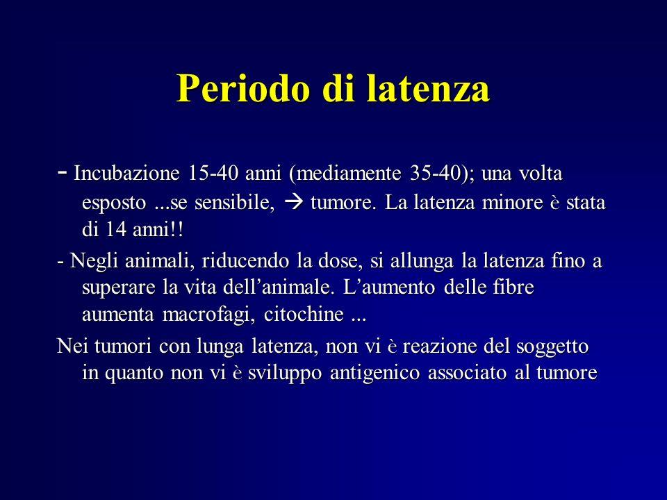 Periodo di latenza - Incubazione 15-40 anni (mediamente 35-40); una volta esposto …se sensibile,  tumore. La latenza minore è stata di 14 anni!!