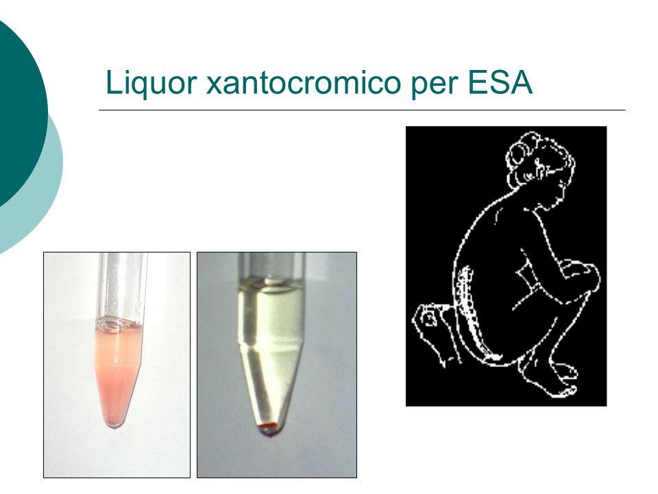Liquor xantocromico per ESA