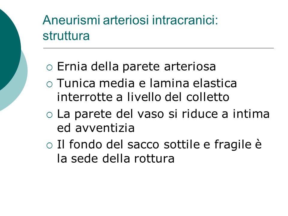 Aneurismi arteriosi intracranici: struttura