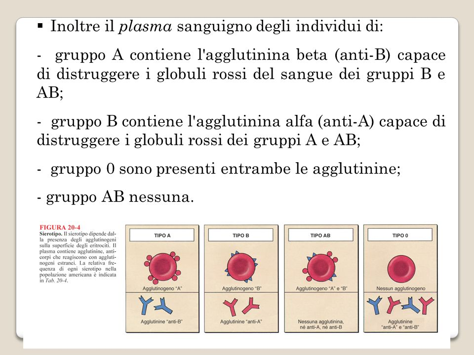 Inoltre il plasma sanguigno degli individui di: