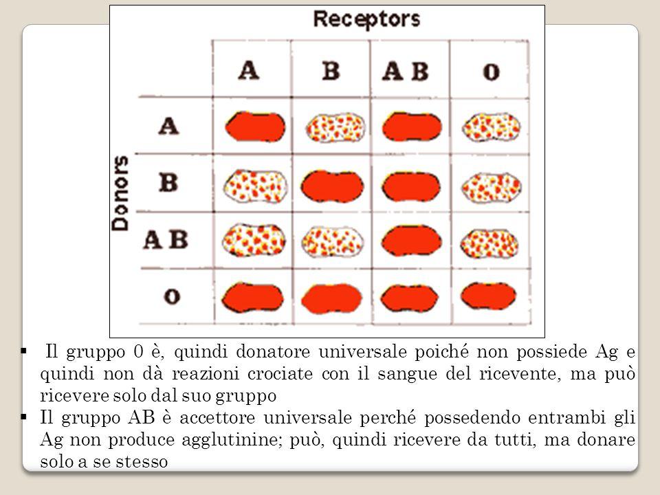 Il gruppo 0 è, quindi donatore universale poiché non possiede Ag e quindi non dà reazioni crociate con il sangue del ricevente, ma può ricevere solo dal suo gruppo