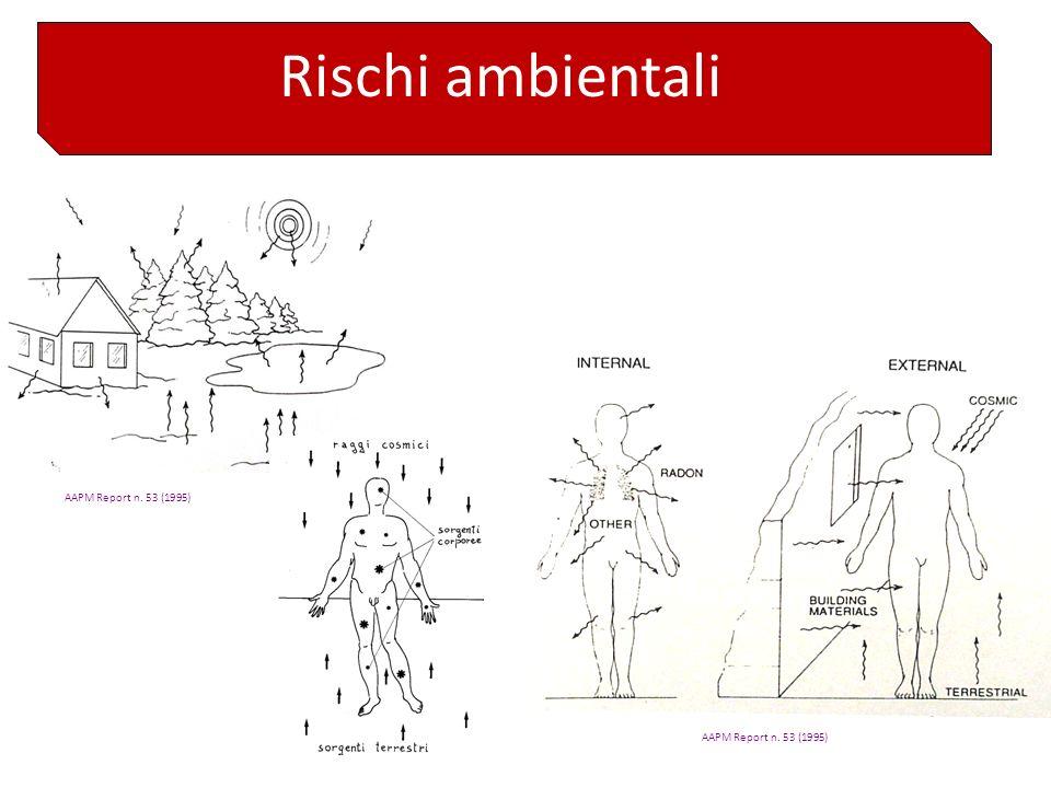 Rischi ambientali AAPM Report n. 53 (1995) AAPM Report n. 53 (1995)