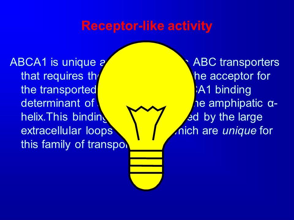 Receptor-like activity