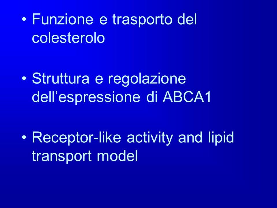 Funzione e trasporto del colesterolo