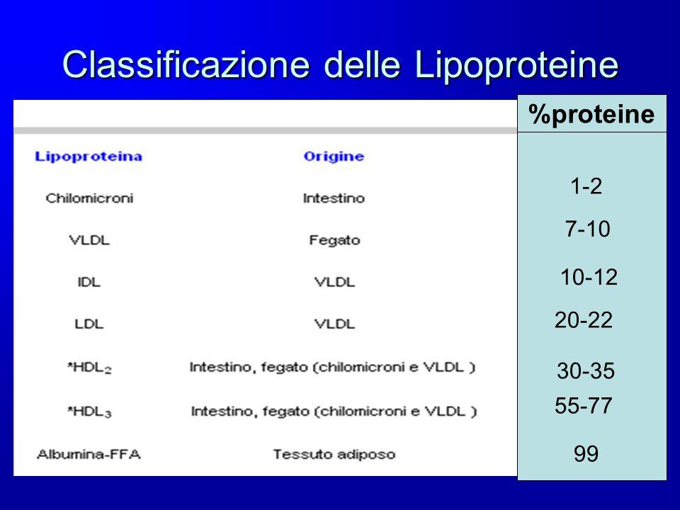 Classificazione delle Lipoproteine