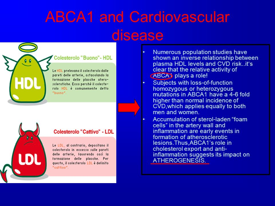 ABCA1 and Cardiovascular disease