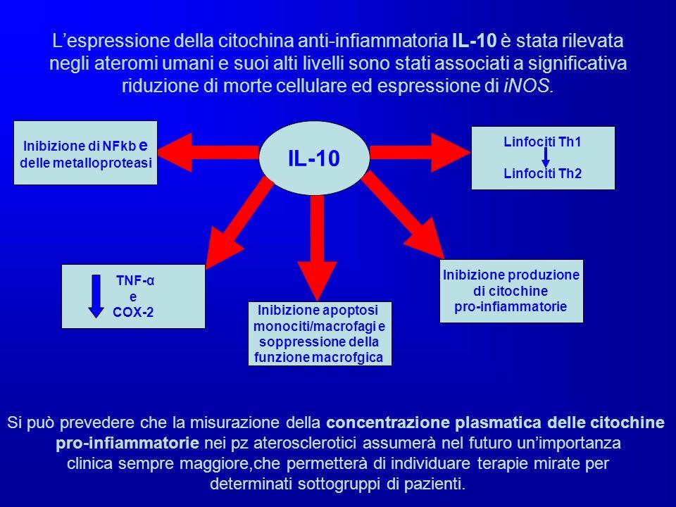 delle metalloproteasi Inibizione produzione