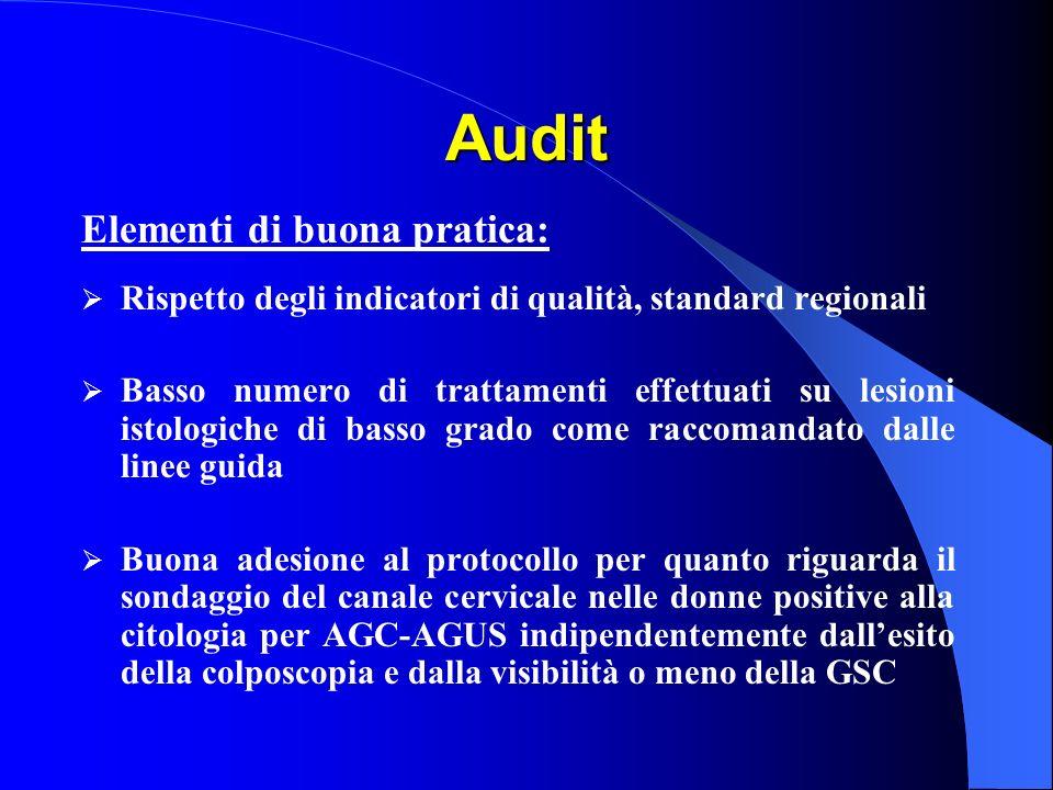Audit Elementi di buona pratica: