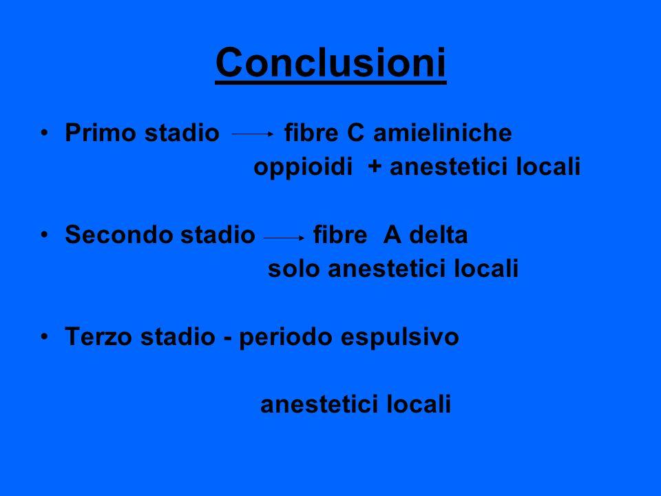 Conclusioni Primo stadio fibre C amieliniche
