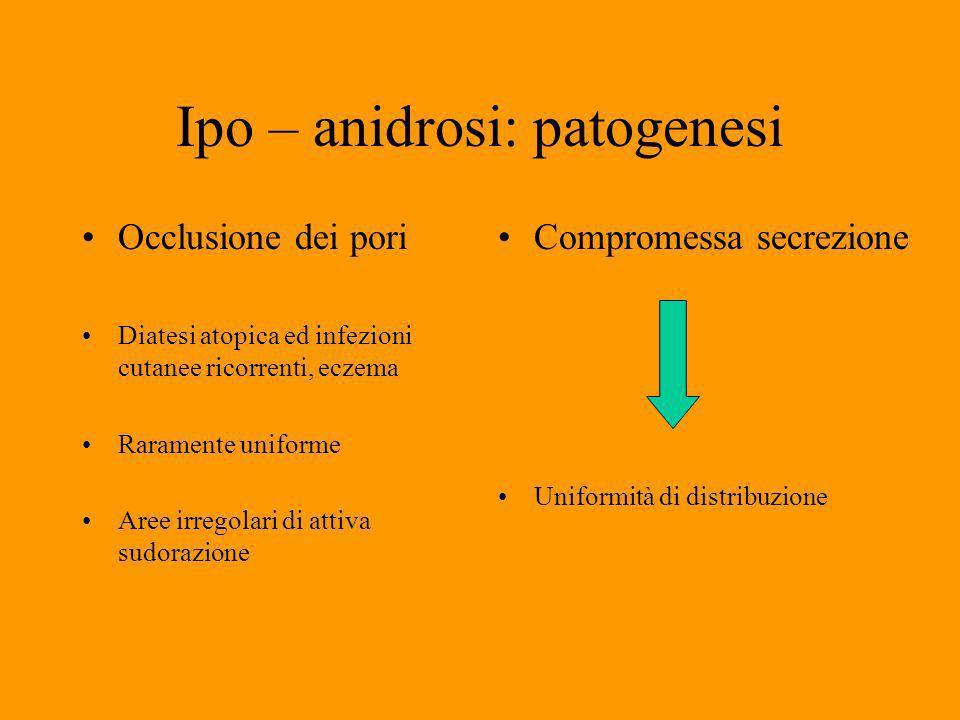 Ipo – anidrosi: patogenesi