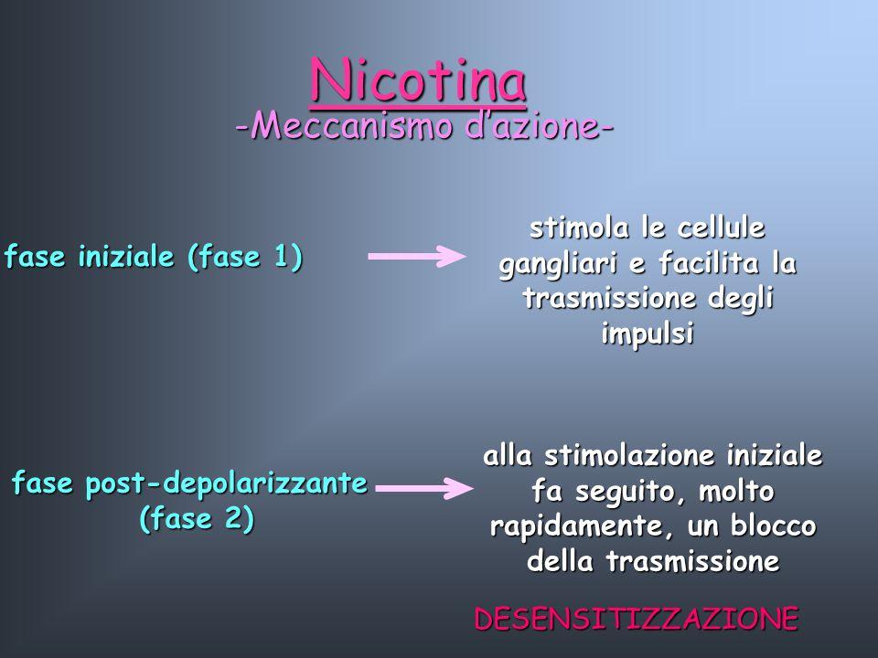 Nicotina -Meccanismo d'azione-