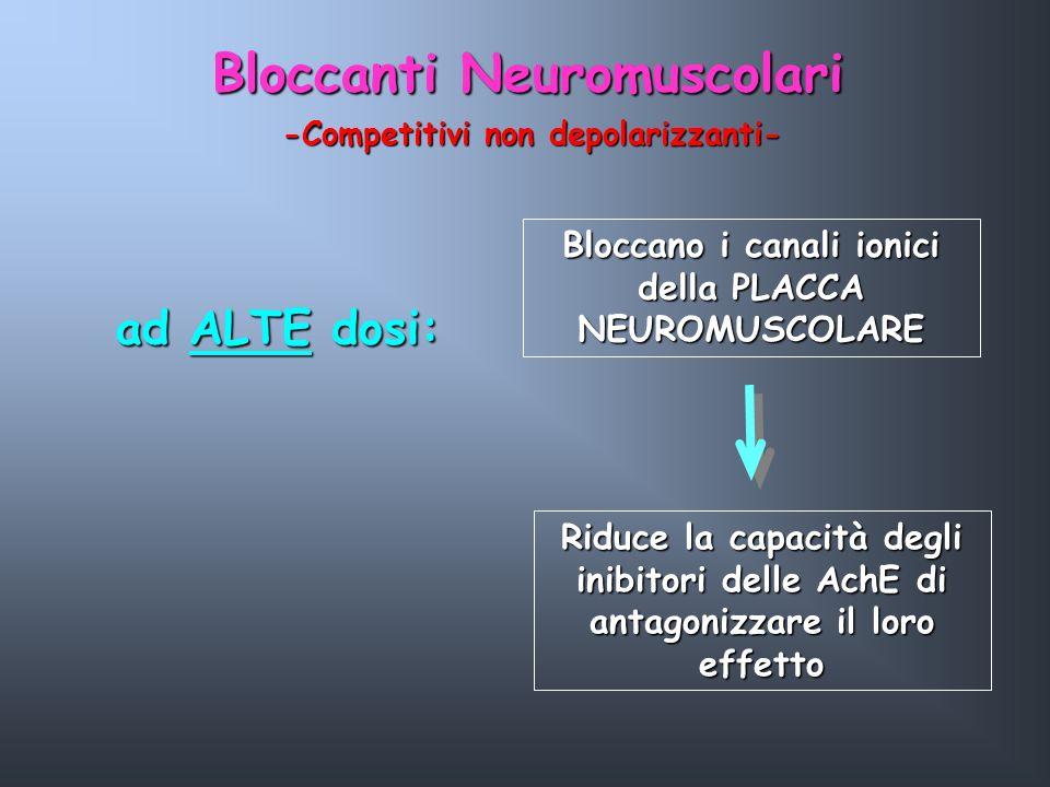 Bloccano i canali ionici della PLACCA NEUROMUSCOLARE