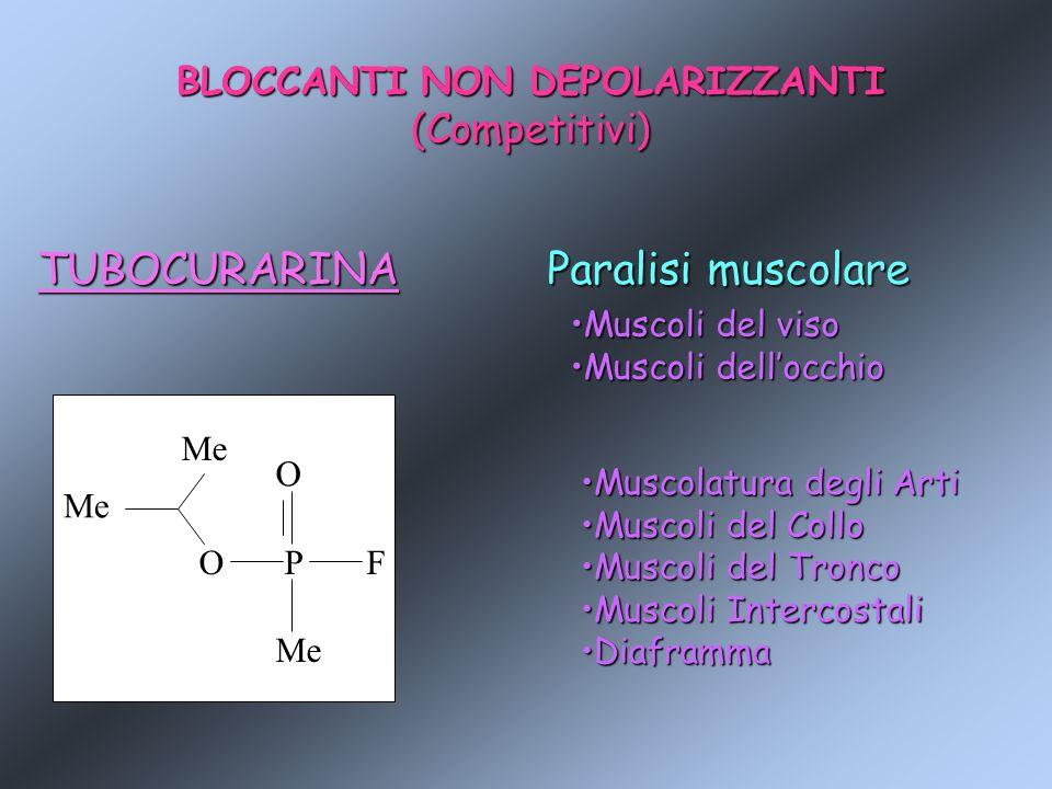 BLOCCANTI NON DEPOLARIZZANTI (Competitivi)