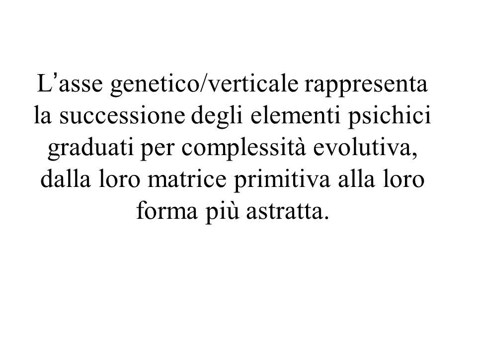 L'asse genetico/verticale rappresenta la successione degli elementi psichici graduati per complessità evolutiva, dalla loro matrice primitiva alla loro forma più astratta.