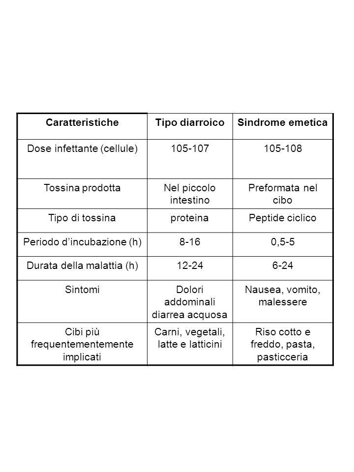 Caratteristiche Tipo diarroico Sindrome emetica