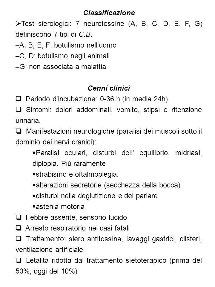 Classificazione Test sierologici: 7 neurotossine (A, B, C, D, E, F, G) definiscono 7 tipi di C.B. A, B, E, F: botulismo nell uomo.