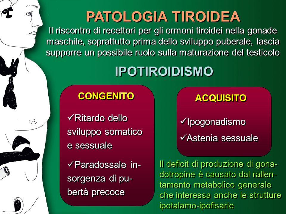 PATOLOGIA TIROIDEA IPOTIROIDISMO CONGENITO ACQUISITO