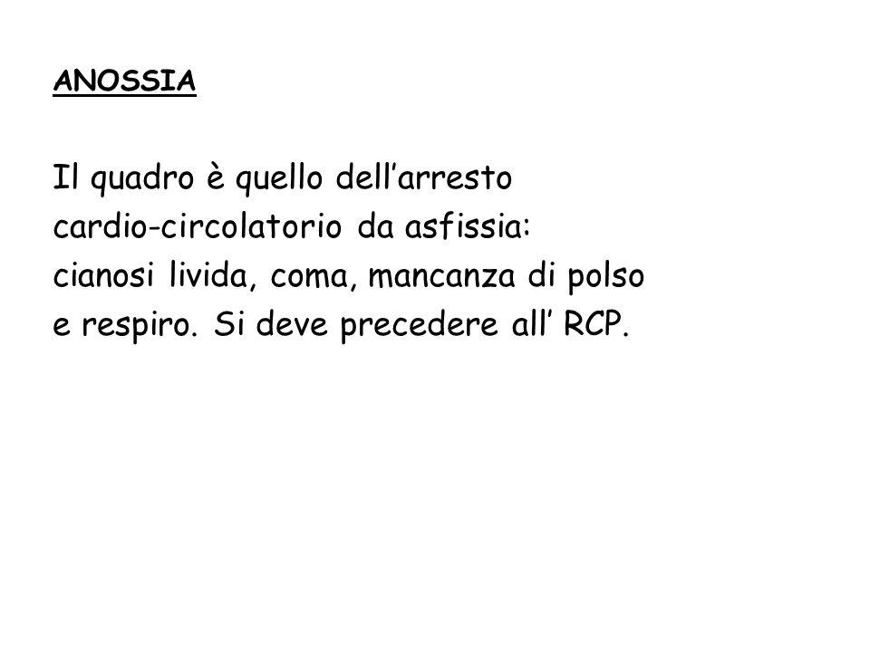Il quadro è quello dell'arresto cardio-circolatorio da asfissia: