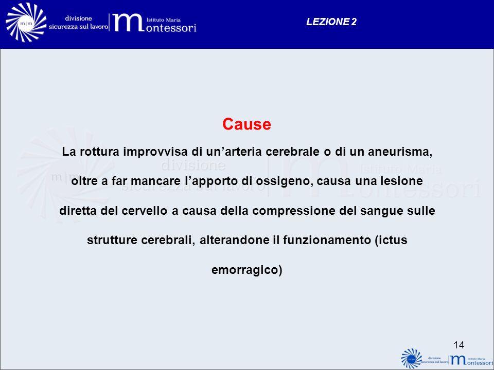 LEZIONE 2 Cause.