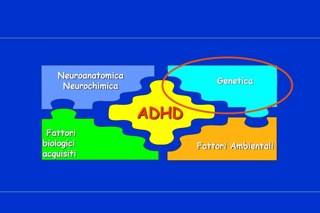 ADHD Neuroanatomica Neurochimica Genetica Fattori biologici acquisiti