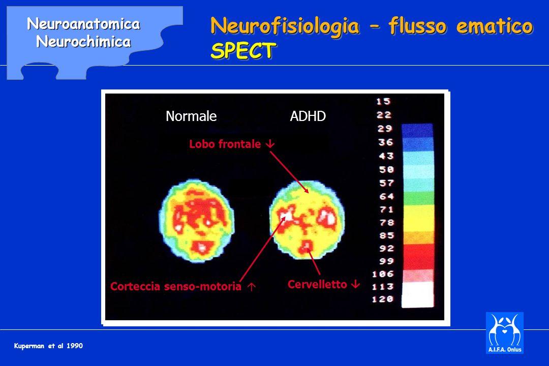 Neurofisiologia – flusso ematico SPECT