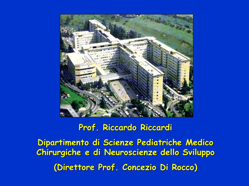 Prof. Riccardo Riccardi (Direttore Prof. Concezio Di Rocco)