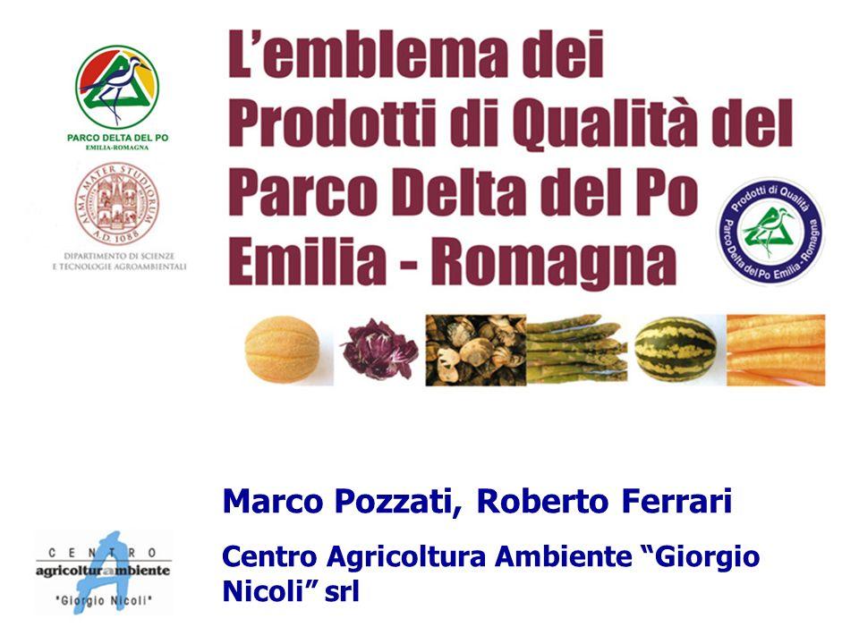 Marco Pozzati, Roberto Ferrari