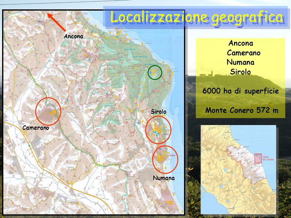 Localizzazione geografica