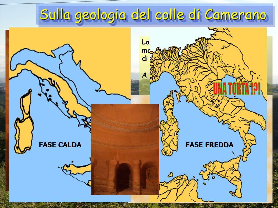 Sulla geologia del colle di Camerano