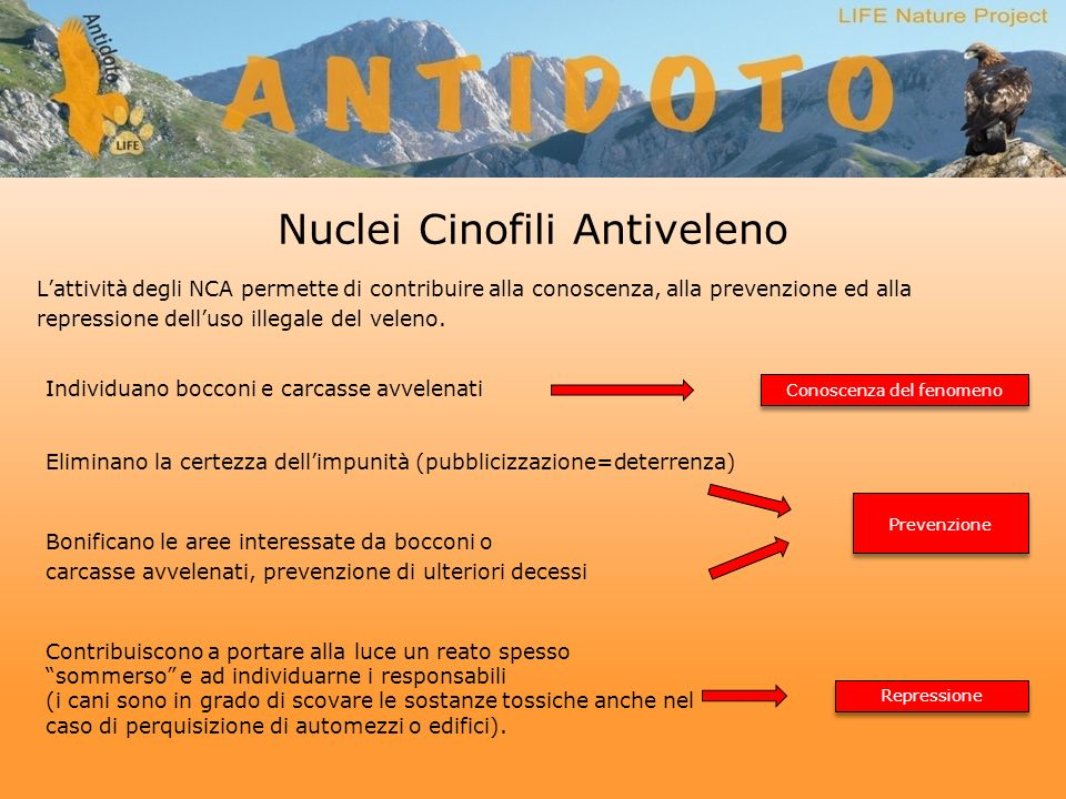 Nuclei Cinofili Antiveleno