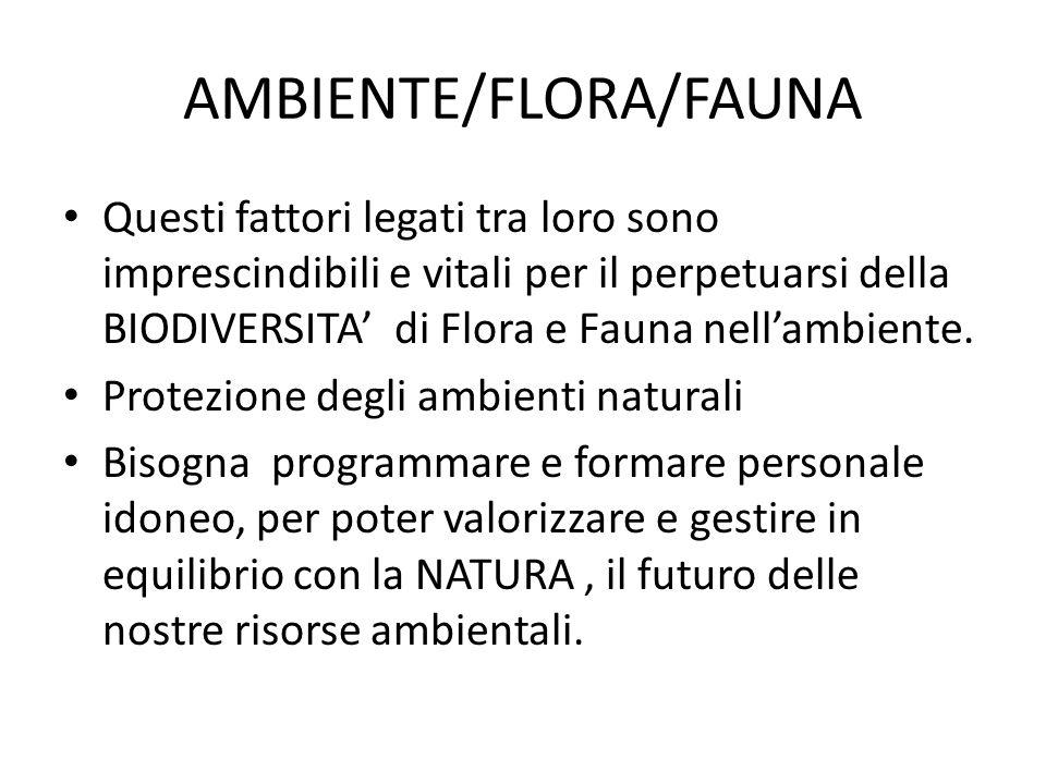 AMBIENTE/FLORA/FAUNA
