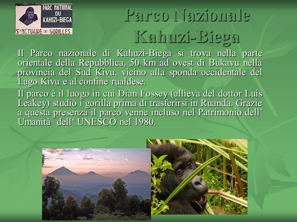 Parco Nazionale Kahuzi-Biega