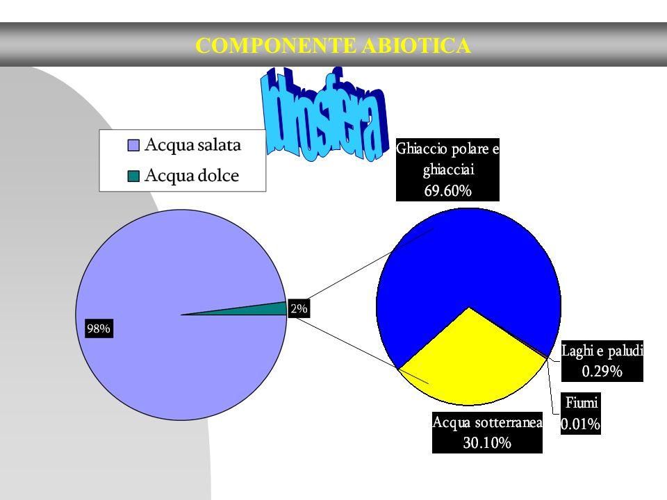 COMPONENTE ABIOTICA Idrosfera