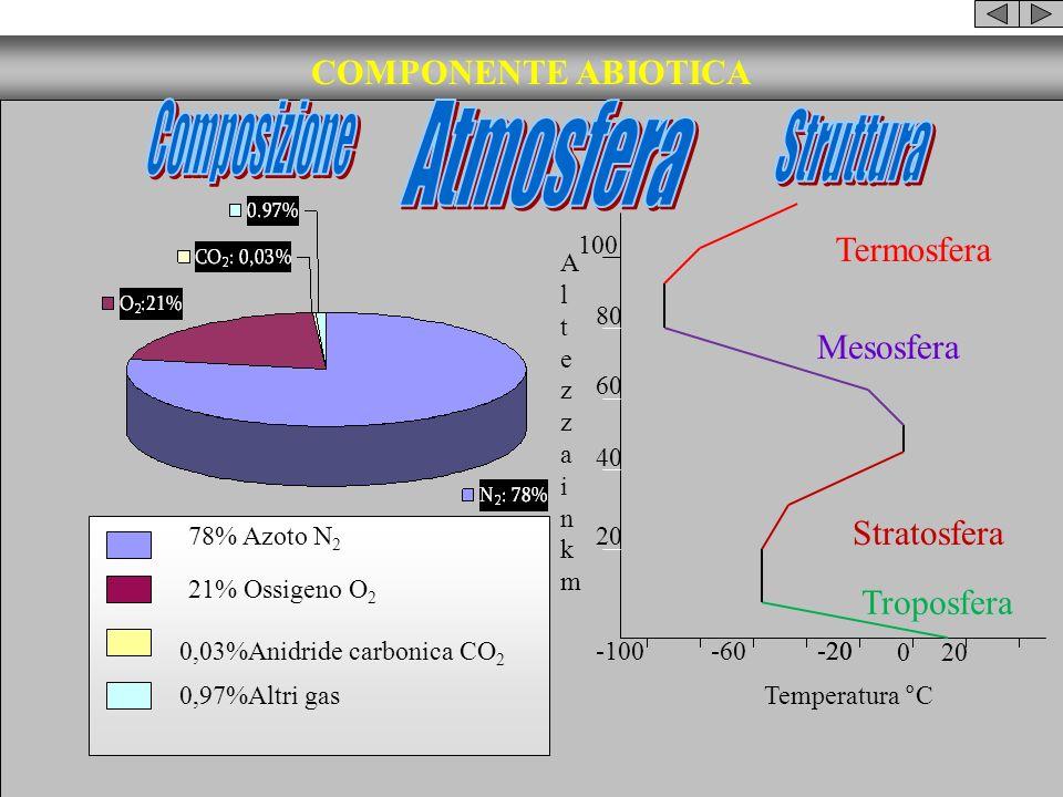 COMPONENTE ABIOTICA Composizione Atmosfera Struttura Termosfera