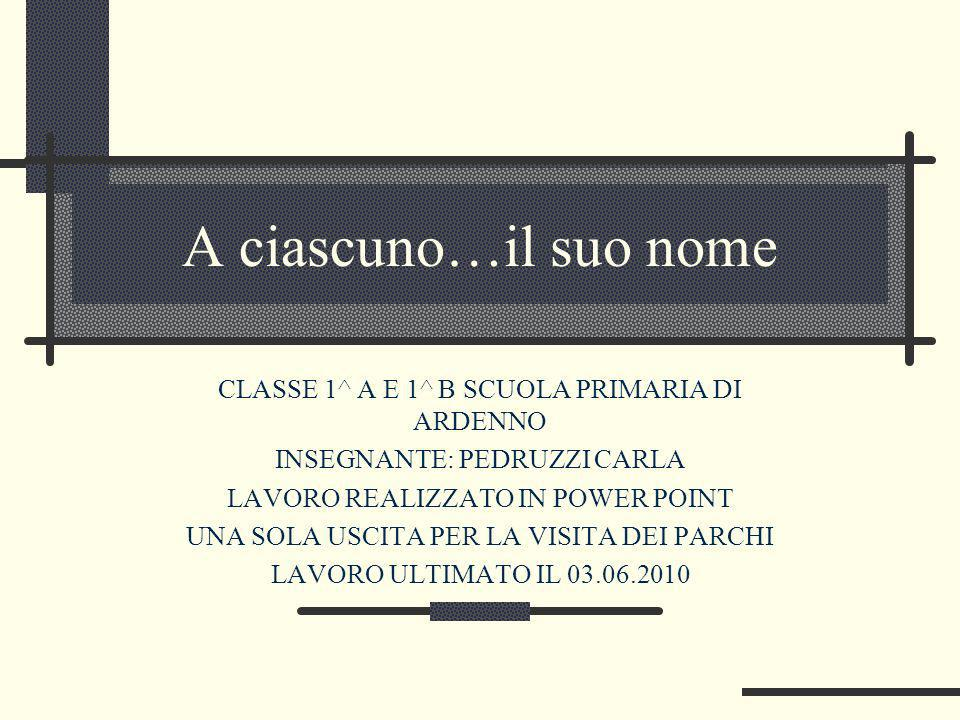 A ciascuno…il suo nome CLASSE 1^ A E 1^ B SCUOLA PRIMARIA DI ARDENNO