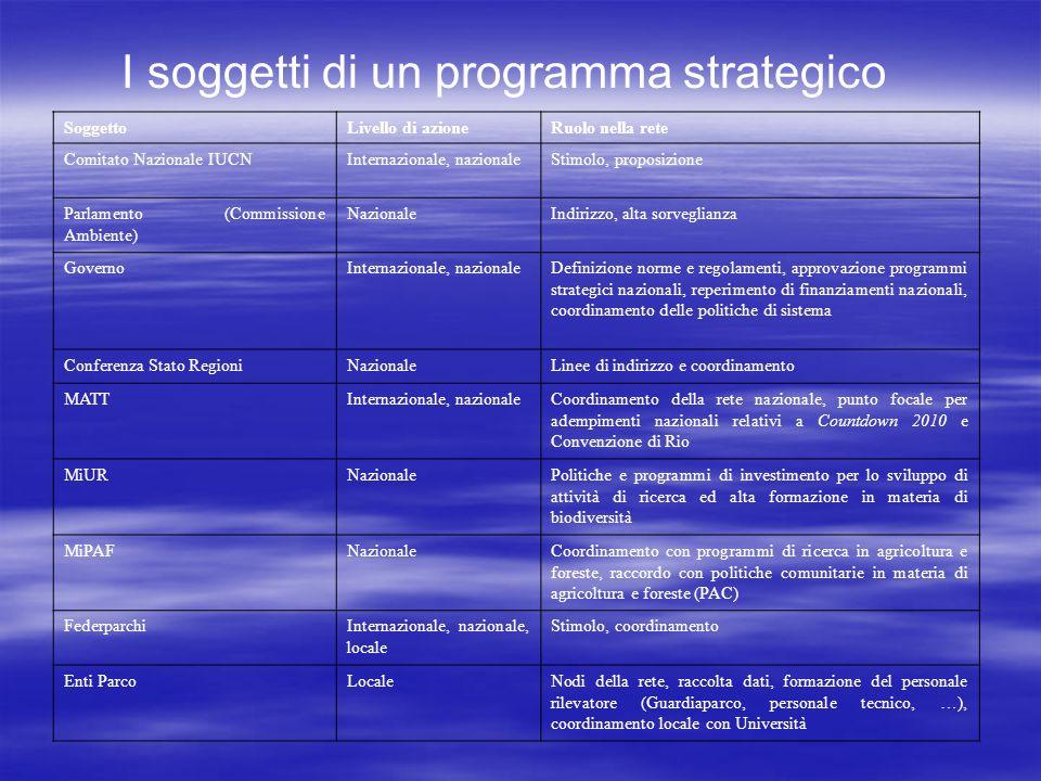 I soggetti di un programma strategico
