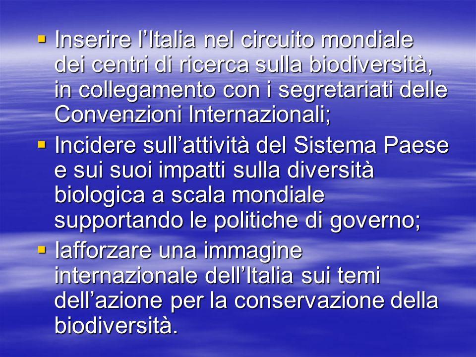 Inserire l'Italia nel circuito mondiale dei centri di ricerca sulla biodiversità, in collegamento con i segretariati delle Convenzioni Internazionali;