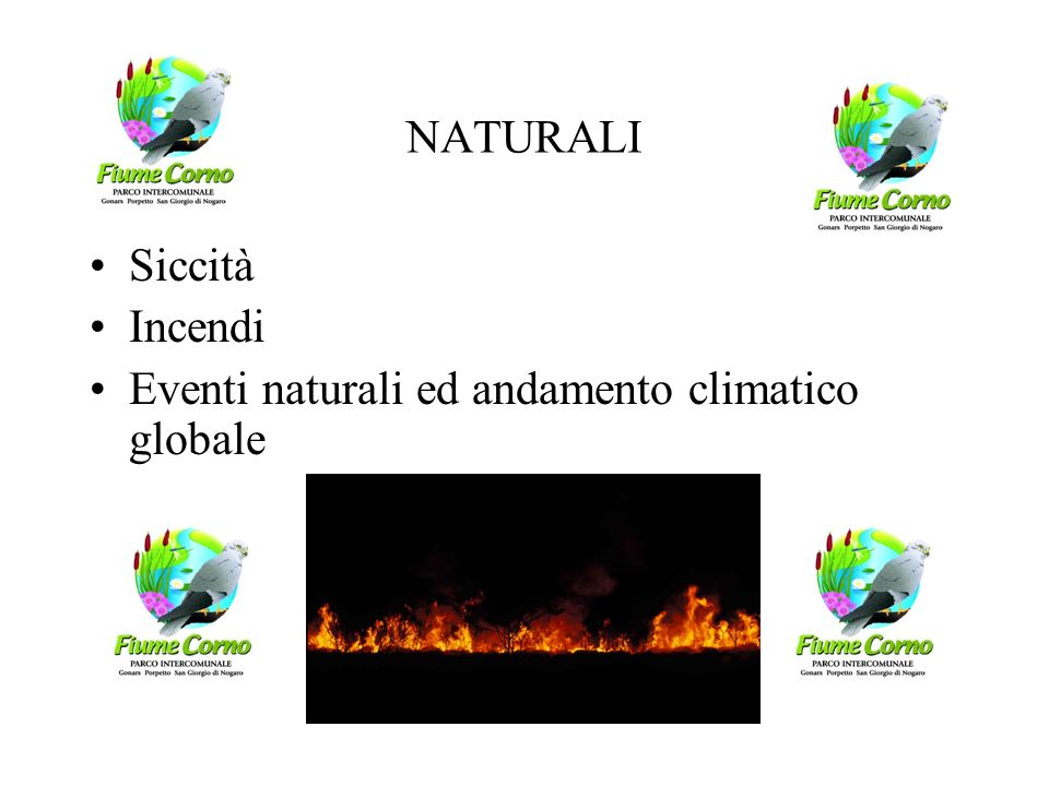 NATURALI Siccità Incendi Eventi naturali ed andamento climatico globale