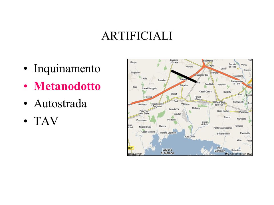 ARTIFICIALI Inquinamento Metanodotto Autostrada TAV